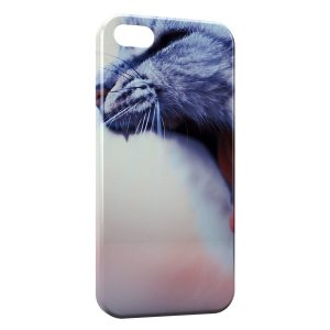 Coque iPhone 5/5S/SE Chat miaulant